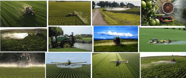 Trader Joe's GMOs Pesticides Food Safety